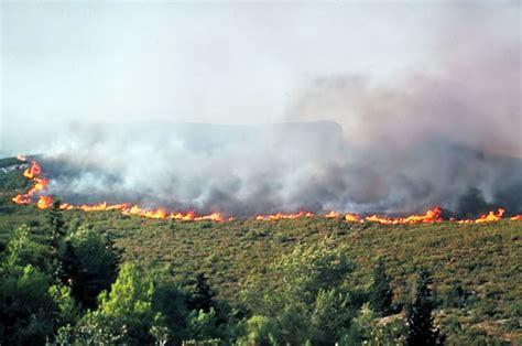 dans la cuisine nantes photos feux de forêt les pompiers contre les incendies