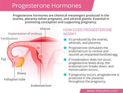 High Progesterone Levels Shecarescom