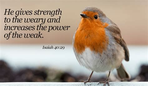 That's really given me strength, and it will give you strength. He WILL make you strong, believe in Him! - Isaiah 40:29 ...
