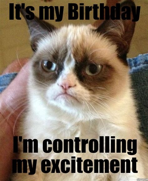 Birthday Grumpy Cat Meme - sad birthday cat meme generator image memes at relatably com