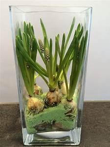 Tulpen Im Glas Ohne Erde : tulpen im glas ohne erde wohn design ~ Frokenaadalensverden.com Haus und Dekorationen