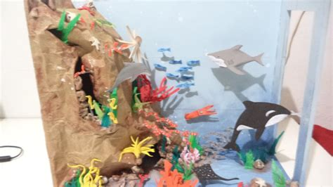 ecosistema marino  maqueta youtube