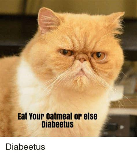 Diabeetus Cat Meme - eat your oatmeal or else diabeetus diabeetus lolcats meme on sizzle