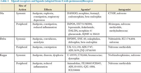 table   opioid receptors semantic scholar