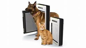 rain detecting automatic pet door keeps your dog or cat With dog and cat doors