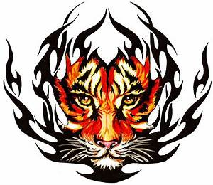 33+ Tribal Tiger Tattoos Designs And Pictures