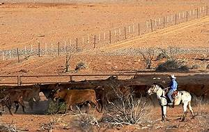 Big Dry drought closes world's biggest cattle ranch Anna ...