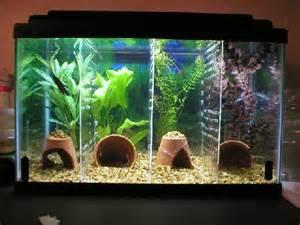 diy aquarium tank dividers petdiys