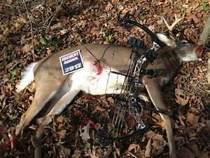 Camo Deer Hunting Logos | www.imgkid.com - The Image Kid ...