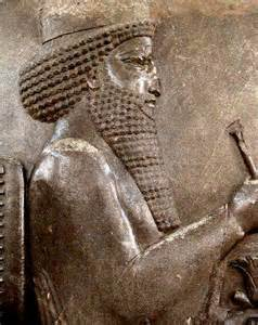Darius The Great Persia