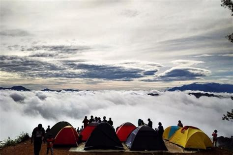 wisata negeri diatas awan citorek banten rental mobil