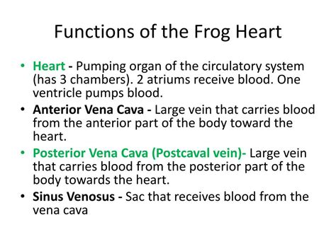 Ppt Frog Body Parts And Functions Know The Terms In