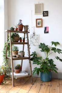 home interior plants 12 popular home décor trends for 2016 zing by quicken loans zing by quicken loans