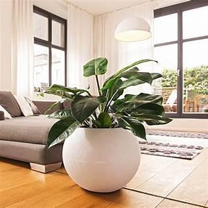 Plante De Salon : lechuza pflanzgef e trends 2014 klukkert ~ Teatrodelosmanantiales.com Idées de Décoration