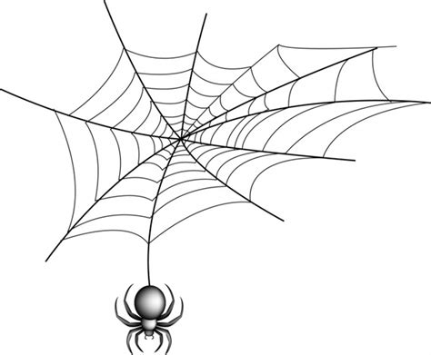 spider  web  vector  adobe illustrator ai ai