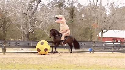 Horse Riding Rex Kicking Ball Soccer Costume
