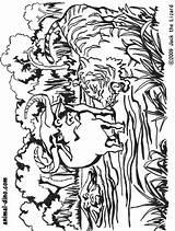 Buffalo Coloring Bills Tiger Head Indian Drawing Helmet Animal Printable Getcolorings 891px 71kb Bill Getdrawings Bison Popular Drawings sketch template