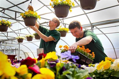 siebenthaler s garden center siebenthaler s leases land for possible pot growing site