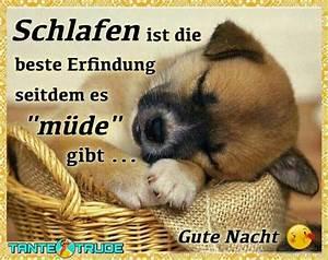 Gute Nacht Sprüche Lustig : gute nacht von 0173foxy03 lustig pinterest ~ Frokenaadalensverden.com Haus und Dekorationen