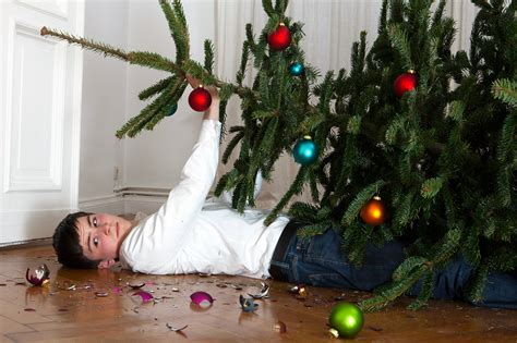 the fine art of setting up a christmas tree without