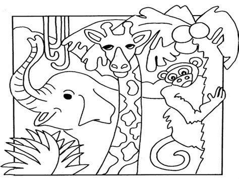 zoo animals coloring pages kidsuki