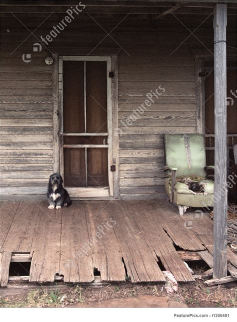 guard dog  front porch stock photo   featurepics