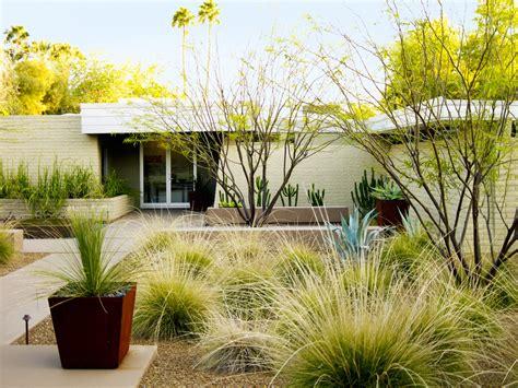 desert garden landscaping desert landscaping ideas from a phoenix front yard sunset