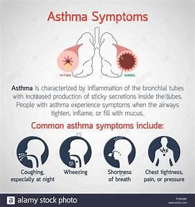 Asthma Illustration Stock Photos  U0026 Asthma Illustration
