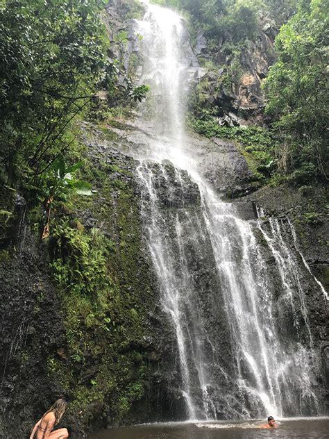 This hike will lead you through the mystic jungle of bamboo trees, exotic fruits! #deva #devajewellery #travel #devatravel #hawaii #maui # ...