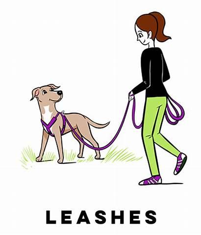 Leash Dog Clipart Grisha Stewart Clip Campus