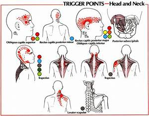 Injury Report  Neck Muscle Tension  U0026 Strains