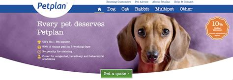 Petplan is a comprehensive pet insurance plan provider that offers a range of coverages for dogs and cats. 10 Pet Insurance Affiliate Programs To Secure Affiliate Earnings