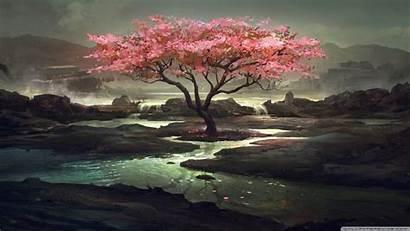 Tree Blossom Painting Background 4k Desktop Wallpapers