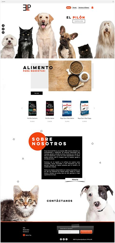 elpilon  pet store fantasticos spanish wix websites