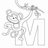 Coloring Pages Monkeys Printable Monkey Printablecolouringpages Via sketch template