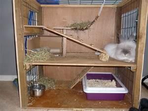 Maison Pour Lapin : cages pour rongeurs ~ Premium-room.com Idées de Décoration
