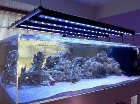 led fish tank lights led aquarium lighting the buyer s guide home aquaria