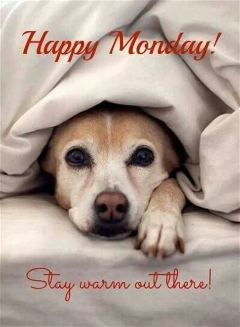 happy monday pictures   images  facebook
