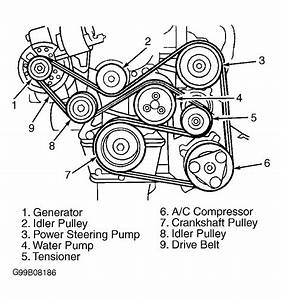 1999 Ford Escort Serpentine Belt Routing And Timing Belt