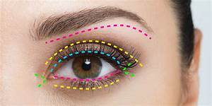 Eye Makeup Guide For Beginners A Map For Eyeshadow And