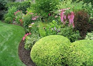 Common landscaping bushes inspiring landscaping bushes for Garden plant design