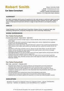 Working In A Fast Paced Environment Resume. insurance ...