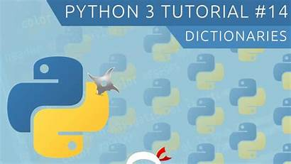 Python Tutorial Beginners Numbers Learn Dictionaries Why