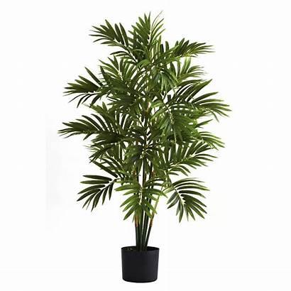 Palm Areca Tree Silk Trees Artificial Depot