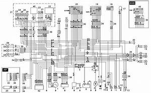 Tao Tao 125 Wiring Diagram  Tao Tao 50 Engine Diagram