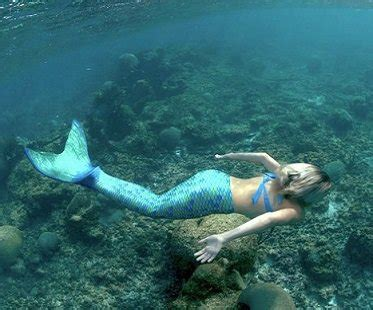 mermaid tail  swimming