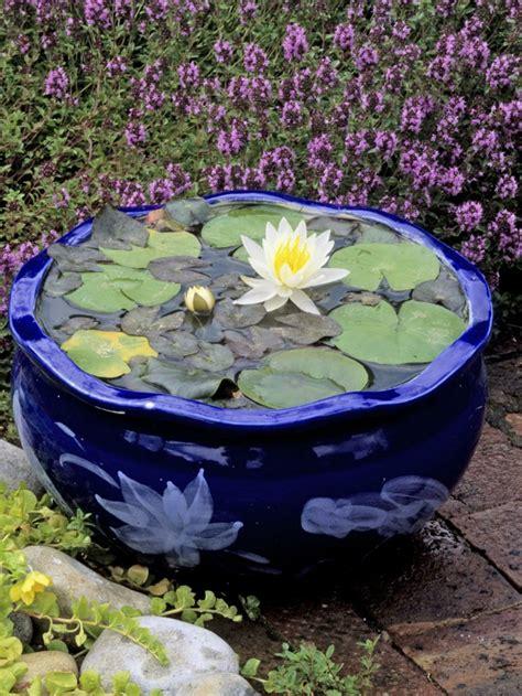 pot pour plante aquatique mini bassin original pour plantes aquatiques