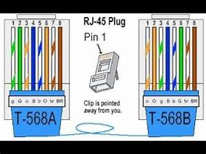 Rj45 Connector Color Code