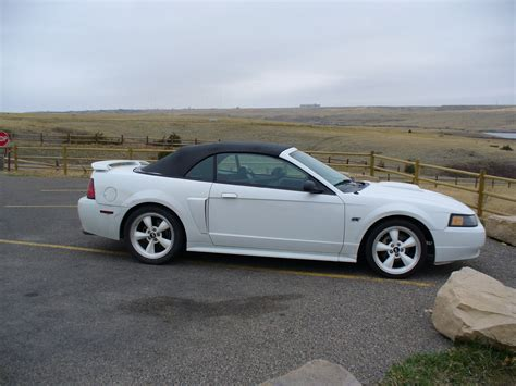 2003 ford mustang gt review 2003 ford mustang pictures cargurus