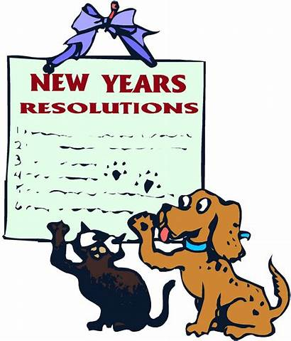 Resolutions Rules Dog Keep Ritzy Thingz Ragz